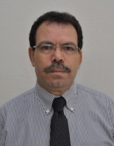Prof. Said AhziPrincipal Investigator, Qatar Environment & Energy Research Institute (QEERI) & Professor, College of Science & Engineering; Hamad bin Khalifa University (HBKU)  Doha, Qatar